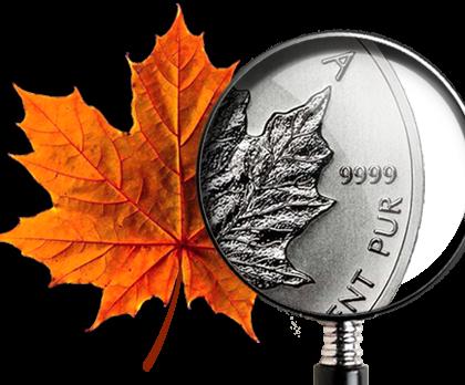 Новости бизнес-иммиграции по канадским провинциям