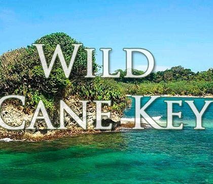 Продается Уайлд Кен Кей (Wild Cane Key) цена $ 360 000 USD