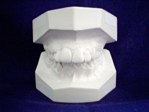 Dental Plan, который всем «по зубам»