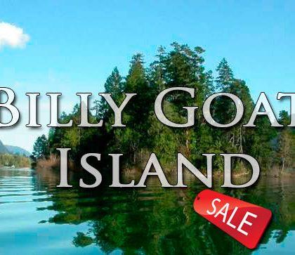 Продается остров Билли Гот (Billy Goat Island) за 521 292,47 USD