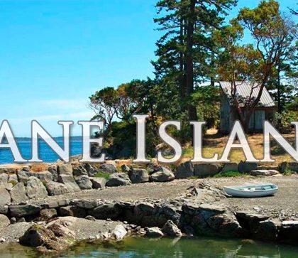 На продажу острова в Британской Колумбии стоимостью до миллиона долларов (обновлено)