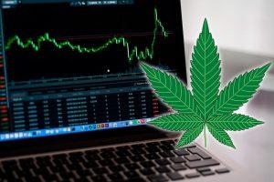 Марихуана на канадских фондовых рынках