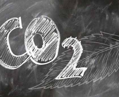 Как получить выплату компенсации для борьбы с изменением климата (CAI)