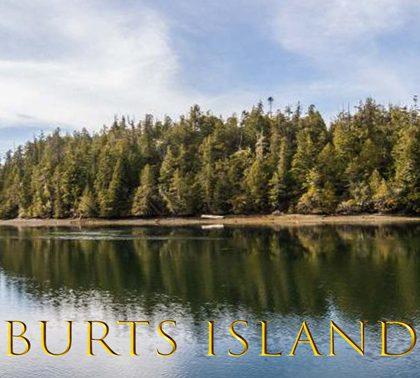 Продается остров Остров Бёртс (Burts Island) за $ 525,920 USD