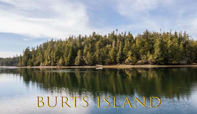 Продается остров Остров Бёртс (Burts Island)