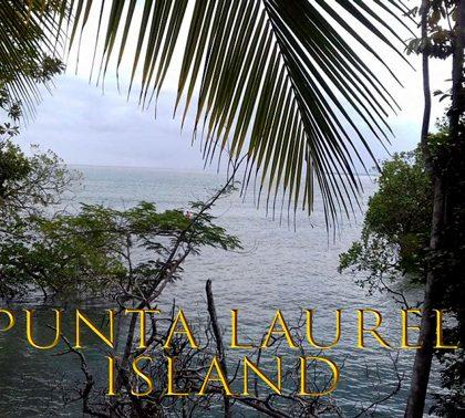 Продается Остров Пунта Лаурель (PUNTA LAUREL ISLAND) за $300,000 USD