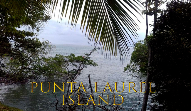 Остров Пунта Лаурель (PUNTA LAUREL ISLAND) за $300,000 USD